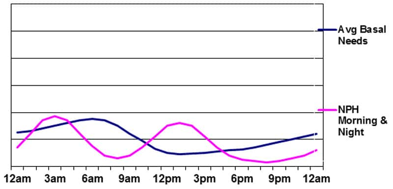 Basal insulin supplied by NPH in the morning and evening
