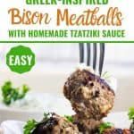 Bison Meatballs