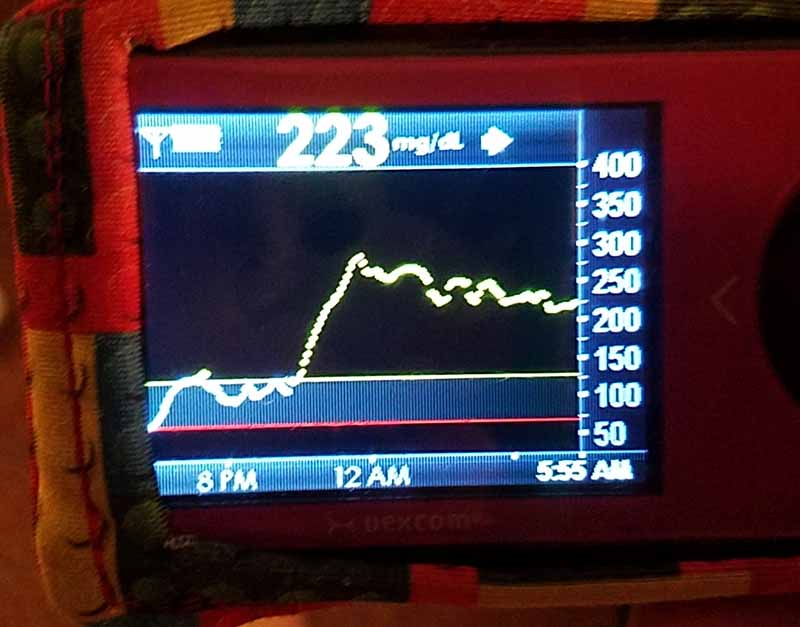 overnight blood sugar graph