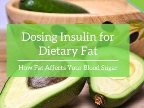 Dosing Insulin for Dietary Fat: How Fat Affects Your Blood Sugar