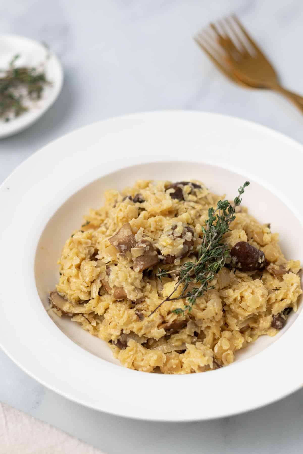 close up of mushroom risotto in white plate